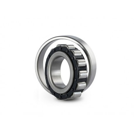 Cylindrical roller bearing N 305 EW NSK 25x62x17